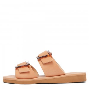 Blush Buckles Women's Slide Sandals