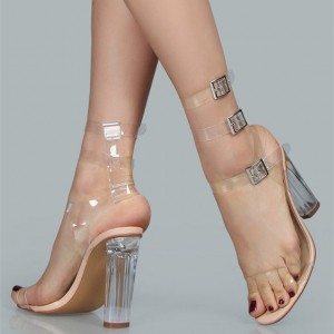 Open Toe Buckles Clear Sandals Chunky heels Ankle Strap Sandals